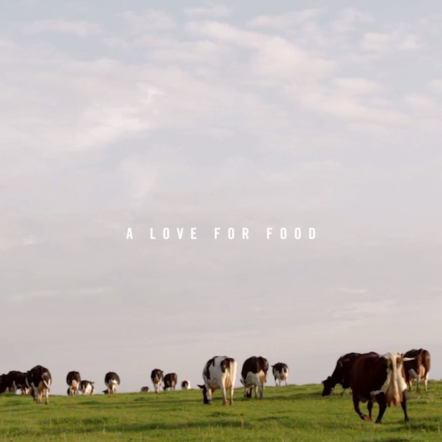 Discover the story of Daylesford at carolebamford.com #ALoveForFood @daylesfordfarm #organic #sustainable #nature #eattobehealthy