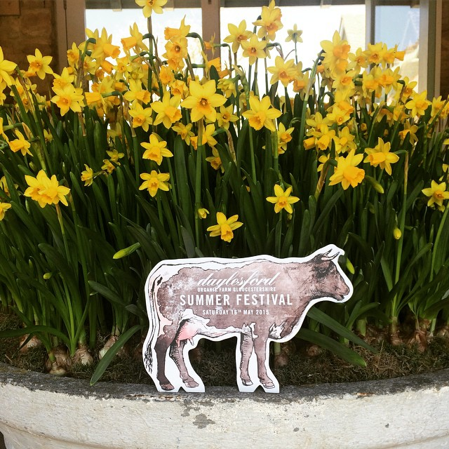 Just three weeks to go until our Summer Festival on Saturday 16th May - a day of fantastic food, farm tours, cookery demos and Lily's dog show. Full details on my blog #daylesfordfest #organic #summer #family #food #fun #farming @daylesfordfarm