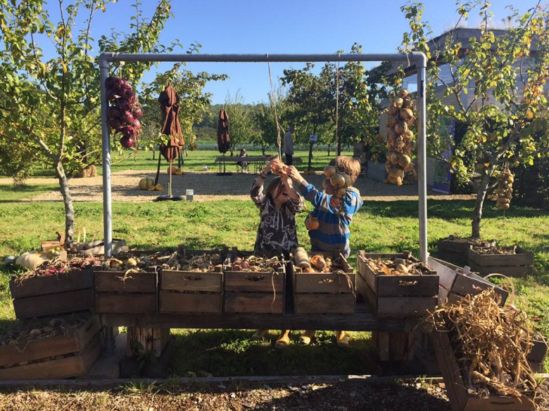 Children playing with hanging vegetables on the farm