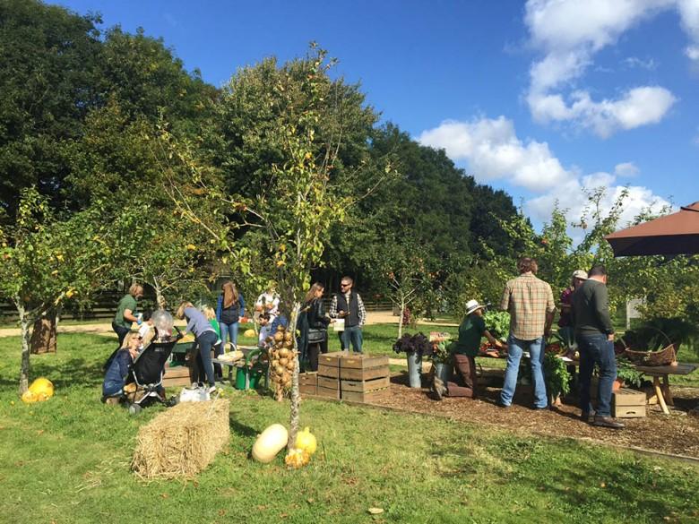 Families gather round on the farm