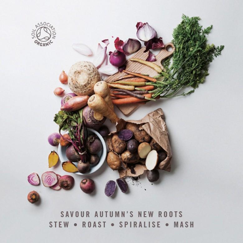 Organic harvest produce