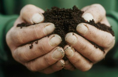 Soil_Association_Video_thumb