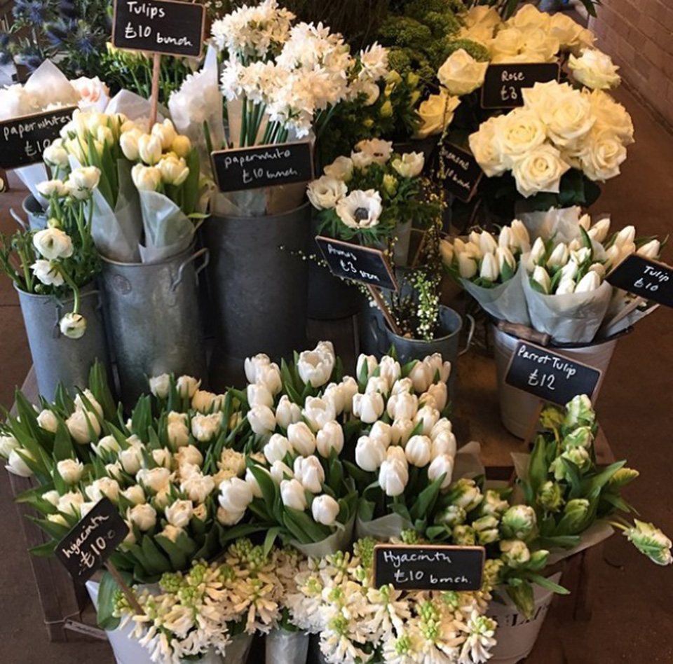 Selection of white flowers