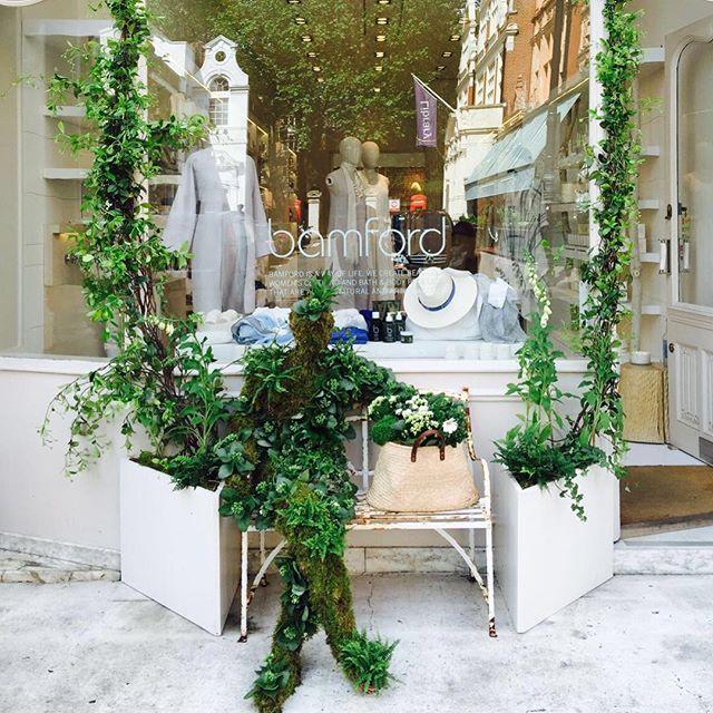 Celebrating the Chelsea Flower Show at our Bamford stores in London #rhs #chelseaflowershow #london #southaudleystreet #draycottavenue #bamford @bamfordjournal