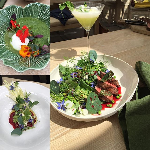 Tasting #eattobehealthy dishes @daylesfordfarm #organic #seasonal #raw #edibleflowers #growyourown #nopesticides #nochemicals #noantibiotics