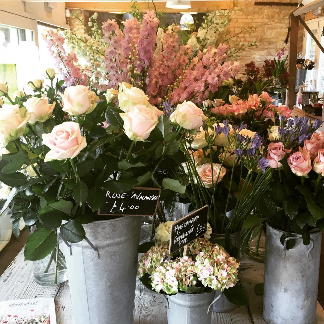 Pretty pastels in the Garden Room today @daylesfordfarm #gardenroom #flowers #cotswolds #summer