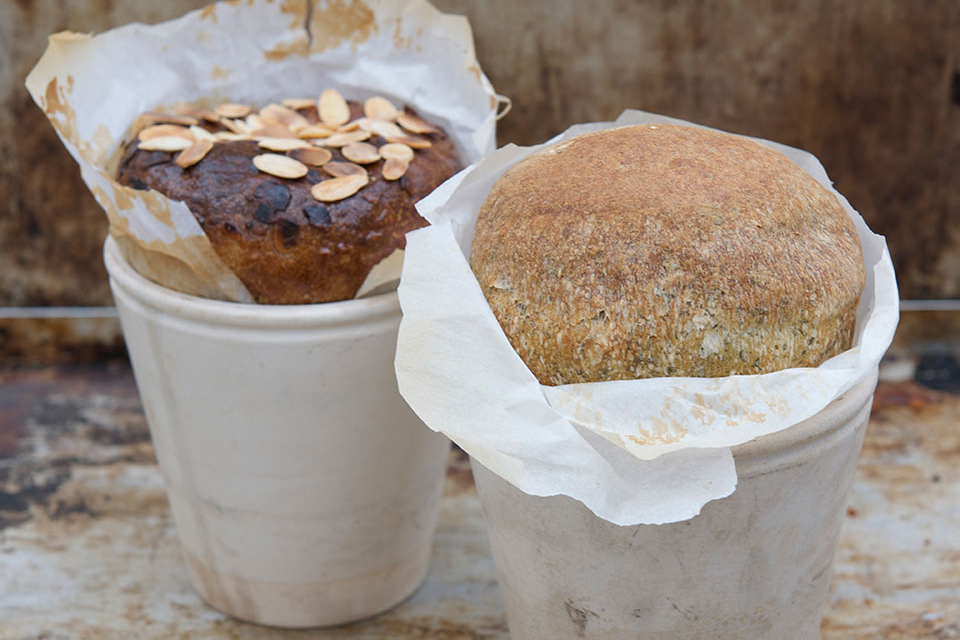 bread flower pot