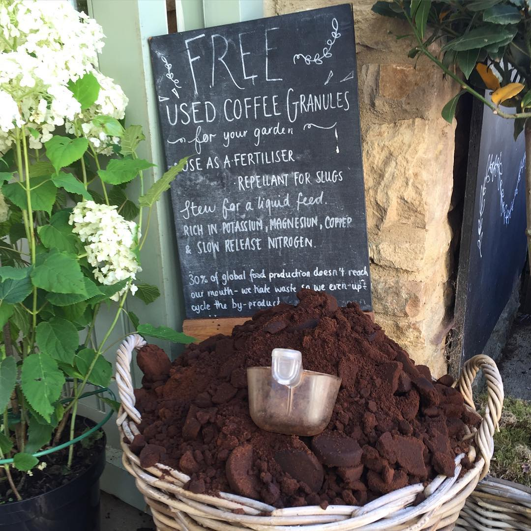 Finding a good use for used coffee granules at the farm #recycle #upcycle #fertiliser #nourish #soil #nutrients #organic #sustainable #farming @daylesfordfarm