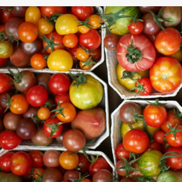 Heritage tomatoes from the market garden, in all their different shapes, colours and sizes #heritage #tomatoes #handpicked #marketgarden #fieldtofork #organic #seasonal #summer  @daylesfordfarm