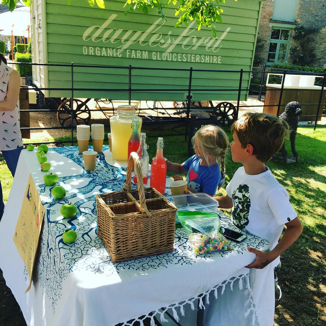 Bravo @mybabainsta for setting up a homemade lemonade stand @daylesfordfarm  for such a worthy cause @greatormondst. It was delicious.