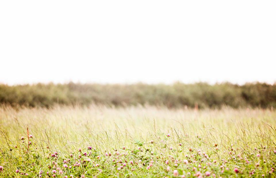 Organic_September_03