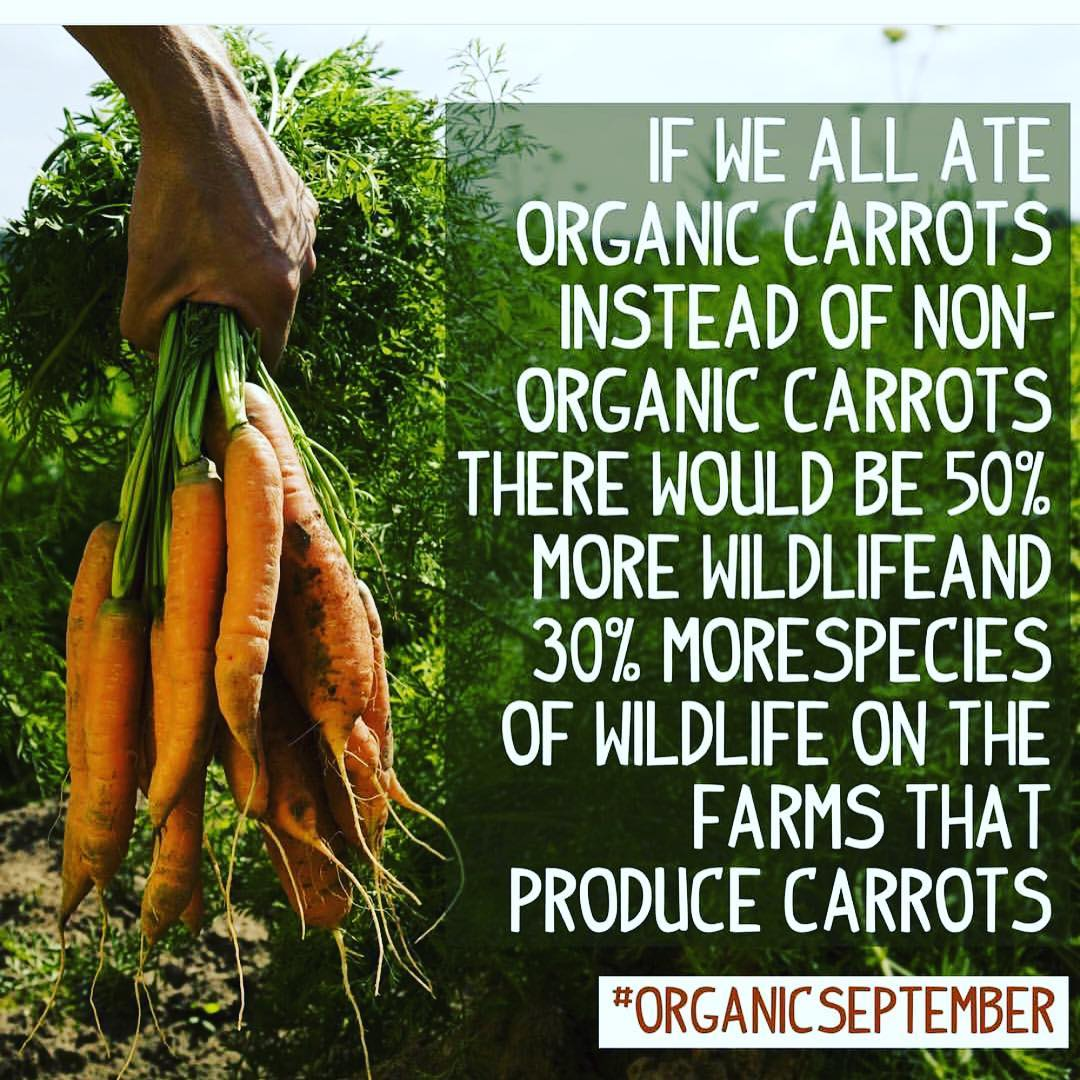 Organic September always organic @daylesfordfarm repost @soilassociation  #organic  #organicseptember