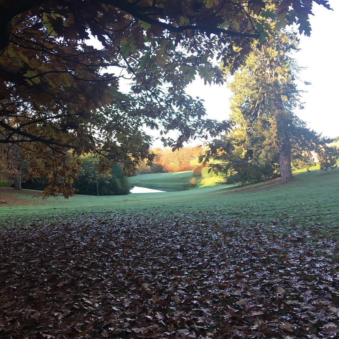 Autumn mornings #englandatitsbest #goldendays #autumn #cotswolds