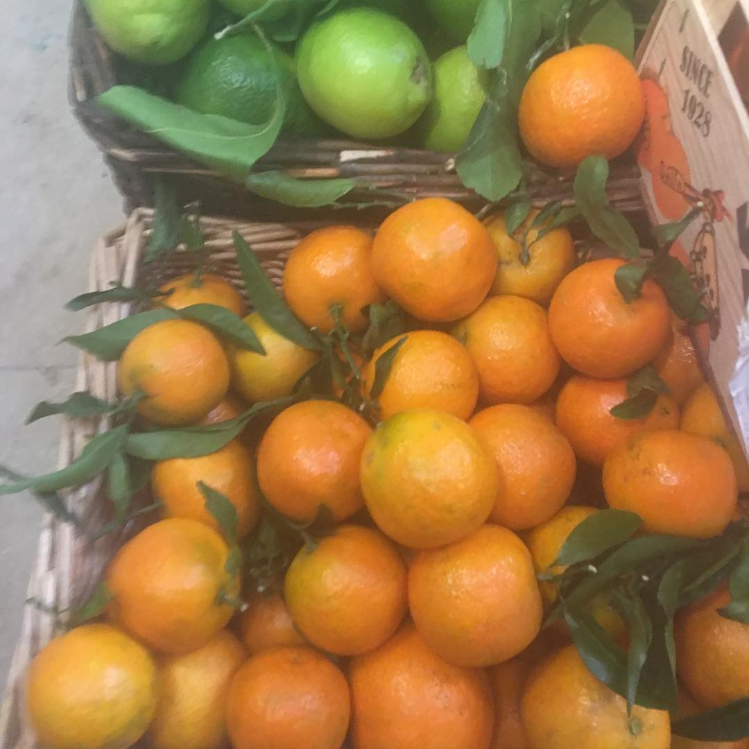 Lots of citrus @daylesfordfarm shops. Full of vitamin C to build immunity at this time of the year #citrus #vitaminc #eattobehealthy #organic