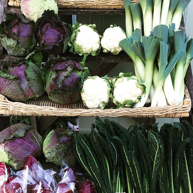Green goodness from the market garden #winter #seasonal #organic #vegetables #Eattobehealthy @daylesfordfarm