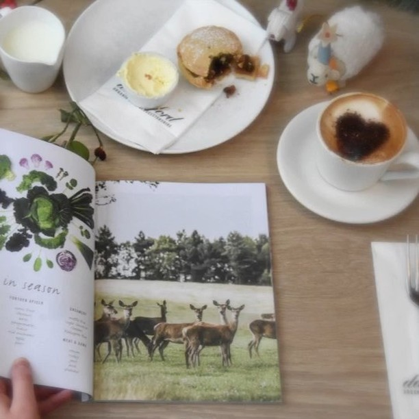 Enjoying the latest issue of our Daylesford Journal, with an organic mince pie #christmas #indulgence #organic #mincepie @daylesfordfarm