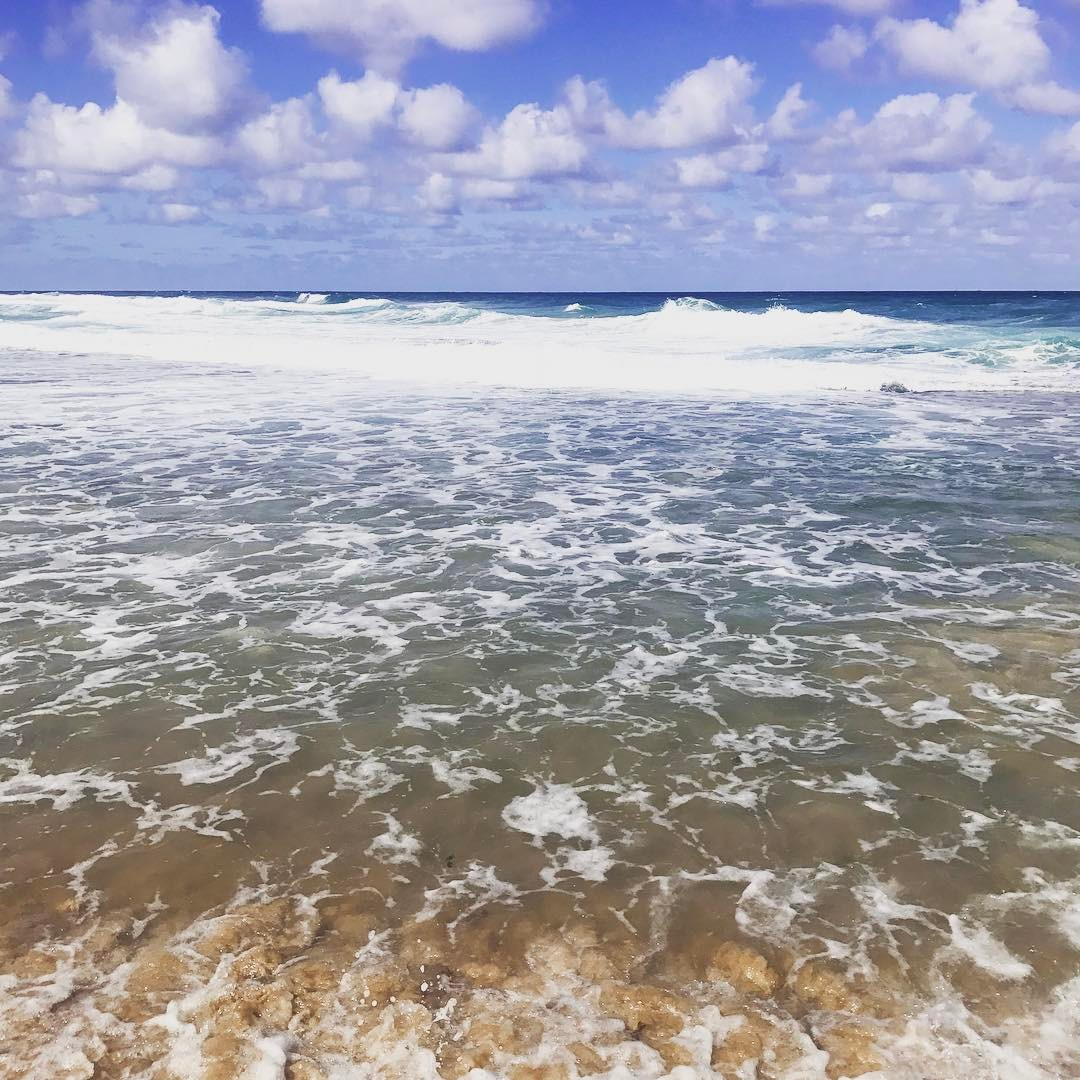 Wild and wonderful #sea #sky #nature