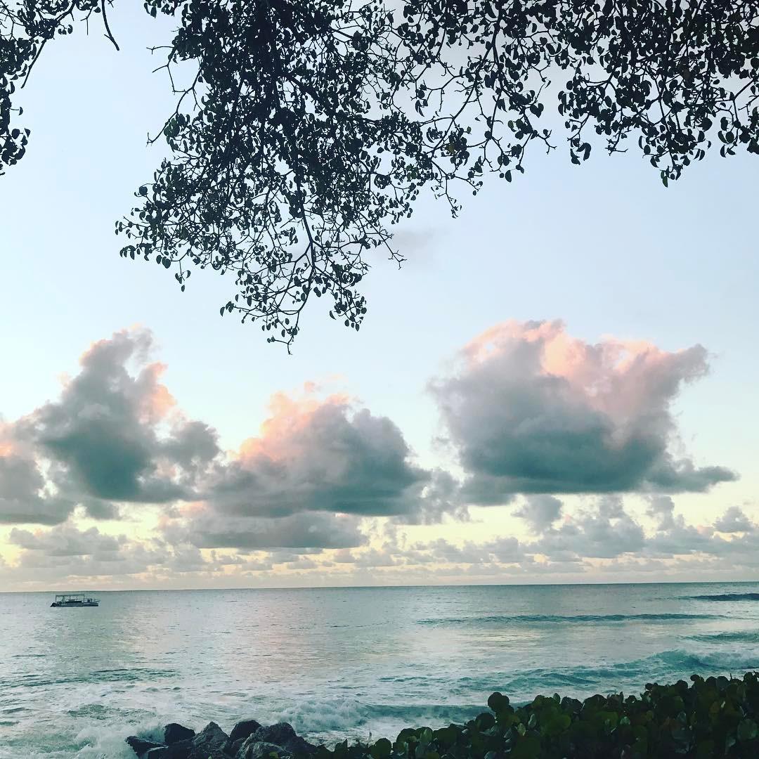 Pink clouds #lovenature #skies