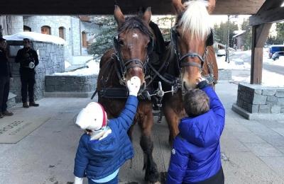 Hello lucky and coquille. #funinthesnow #sleighride #familyfun #skiing