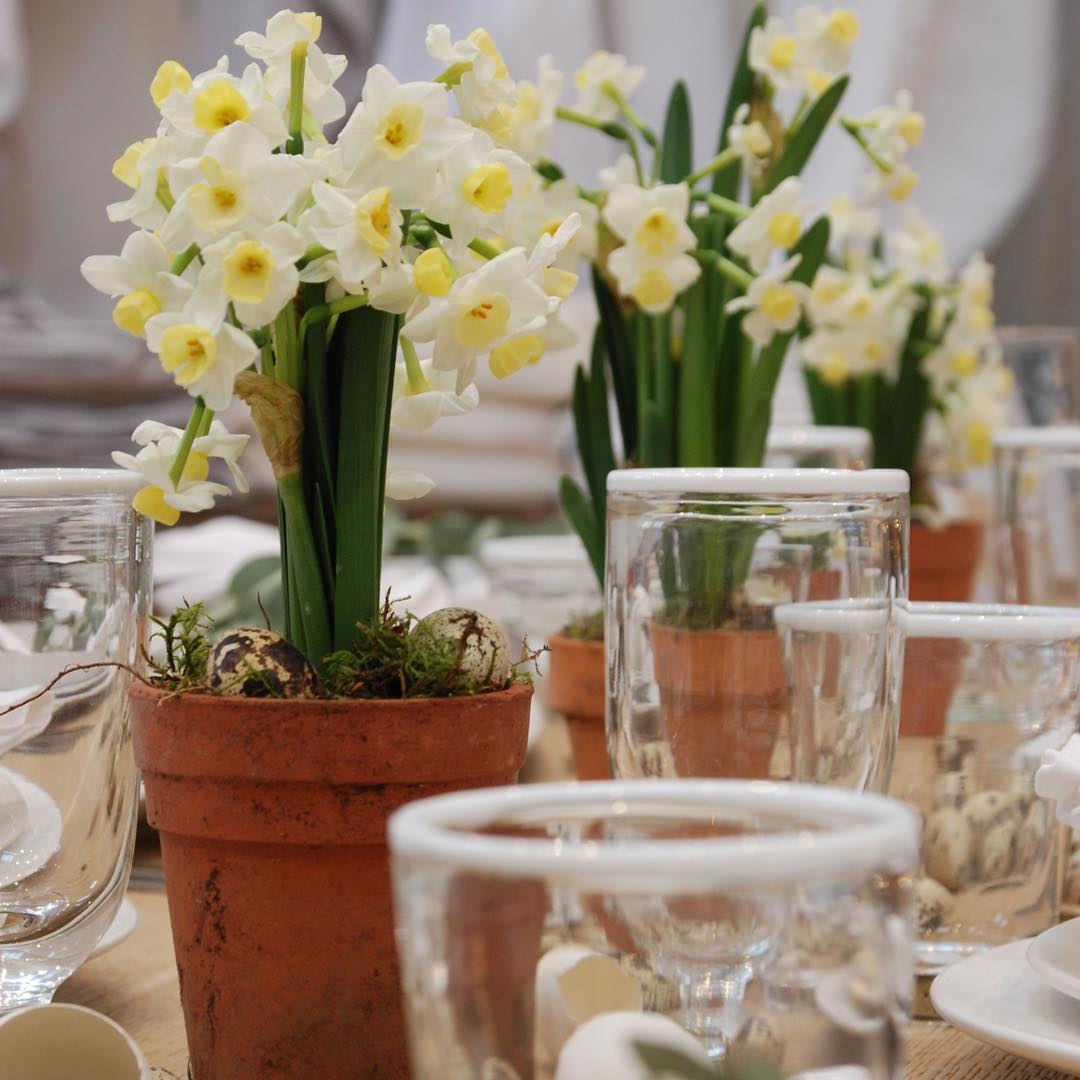 Dwarf daffodils brightening up a spring tabletop #spring #tabletop #nature #homeware @daylesfordfarm