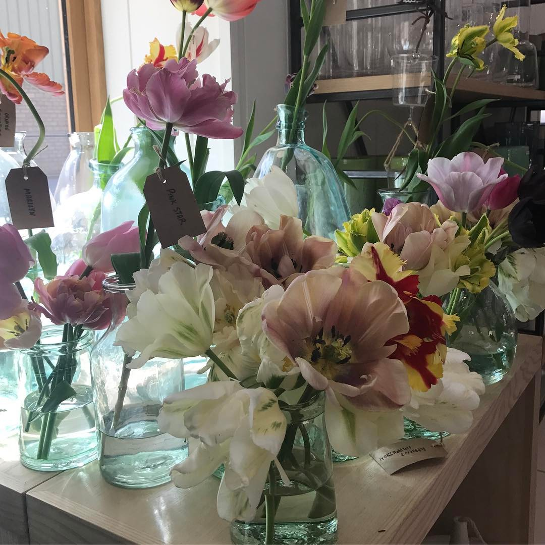 Choosing tulips for our new cutting garden @daylesfordfarm from a selection from @thelandgardeners  I love them all . #tulips #cuttinggarden #organic