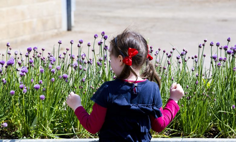 children's morning in the daylesford market garden