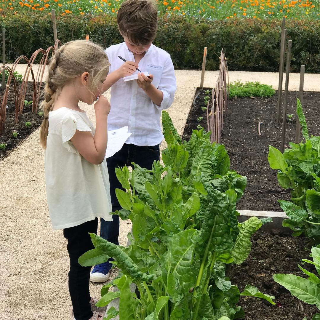 Tasting the first spinach #growyourown #eattobehealthy #gardening #earlylearning