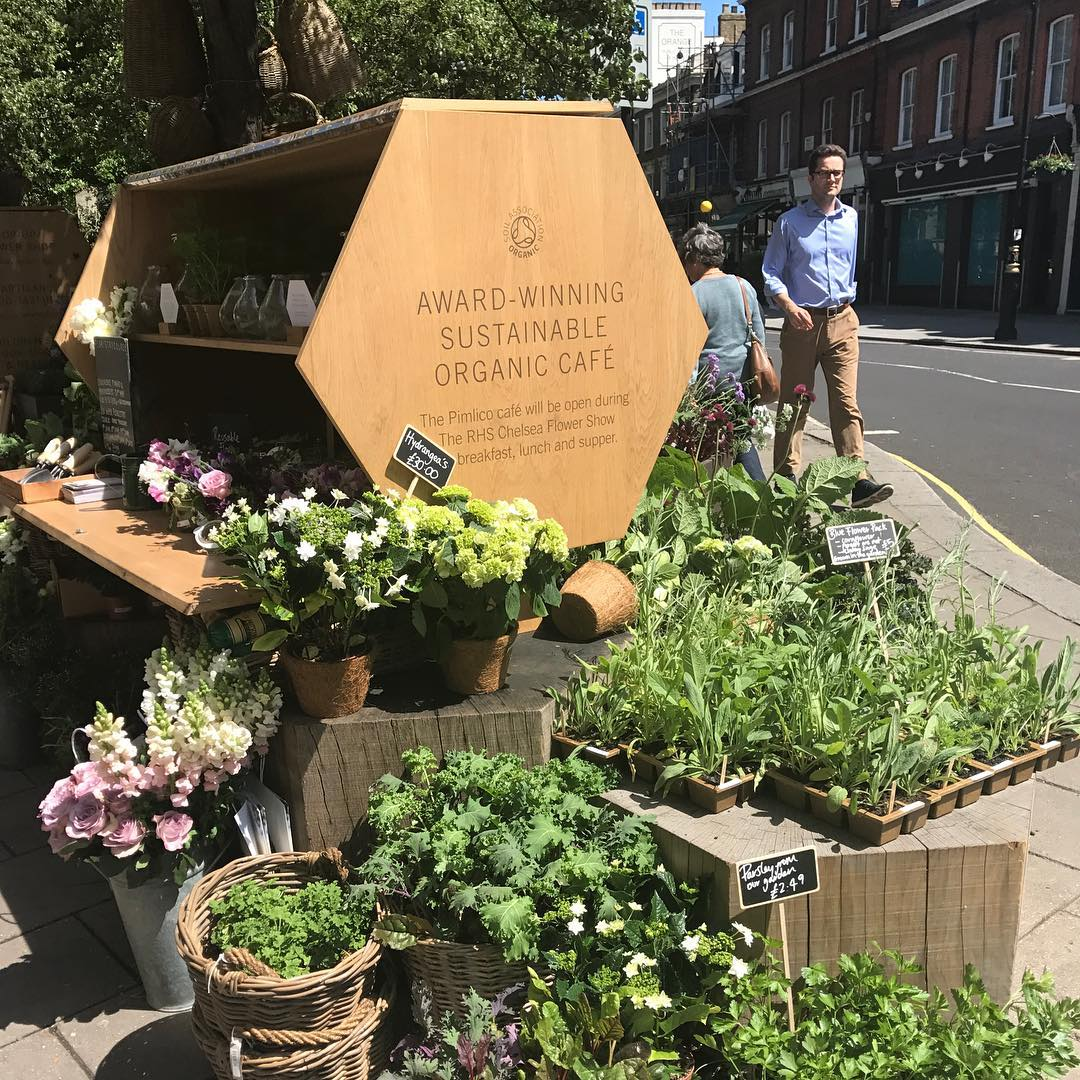Bee friendly plants outside our Pimlico Road farmshop #popup #flowerstall #chelseaflowershow #pimlicoroad #saveourbees @daylesfordfarm