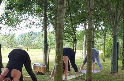 Yoga in the orchard at the Haybarn Spa #nature #wellness #mindfulness #yoga  @bamfordhaybarnspa