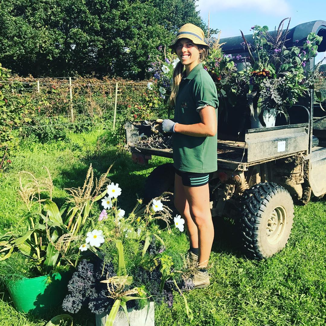 Loved being in the market garden cutting flowers with Saskia. Just a joy on a beautiful chilly morning @daylesfordfarm #cutflowers #homegrown #organic