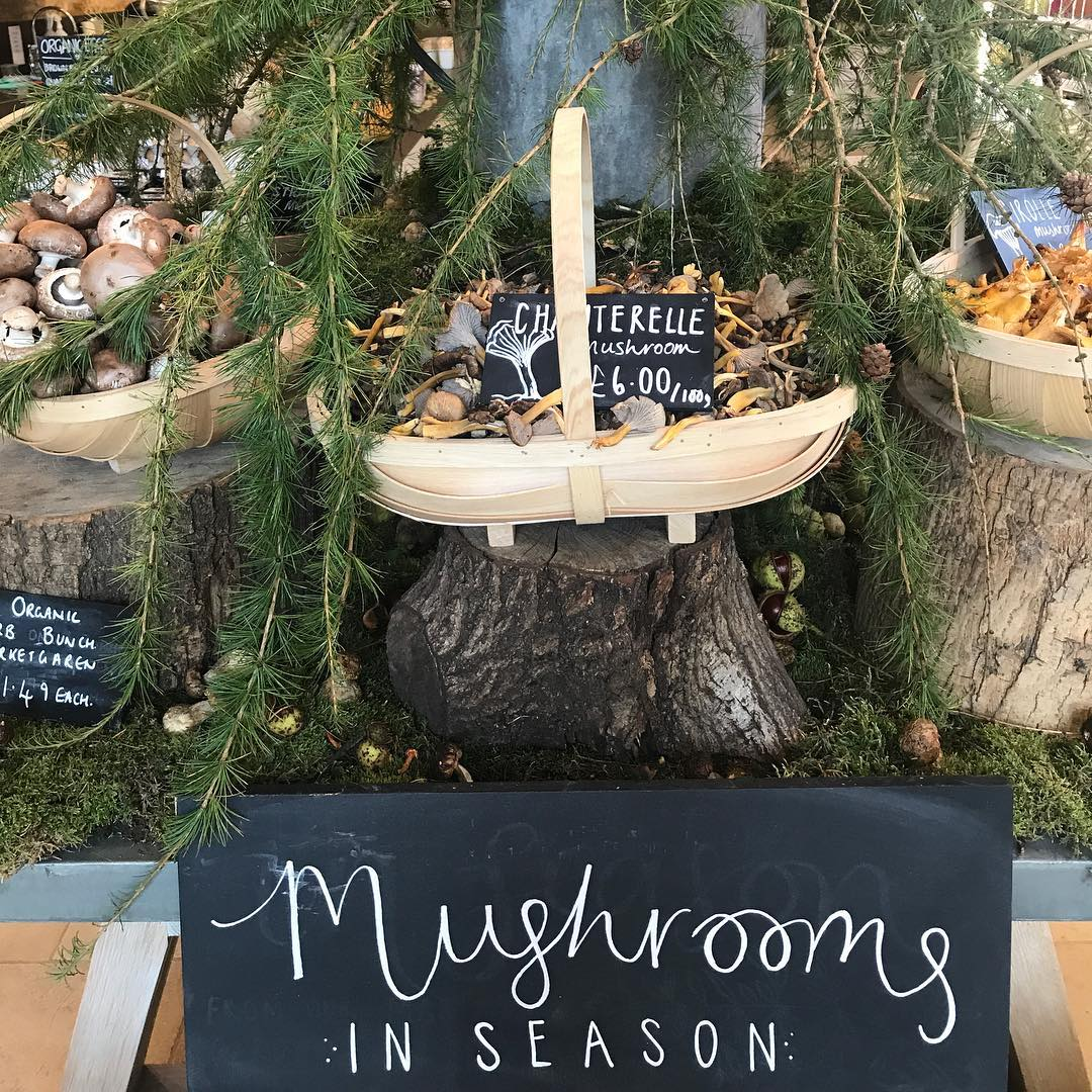 Love this time of the year. Lots to forage. Mushrooms in abundance in our stores @daylesfordfarm #forage