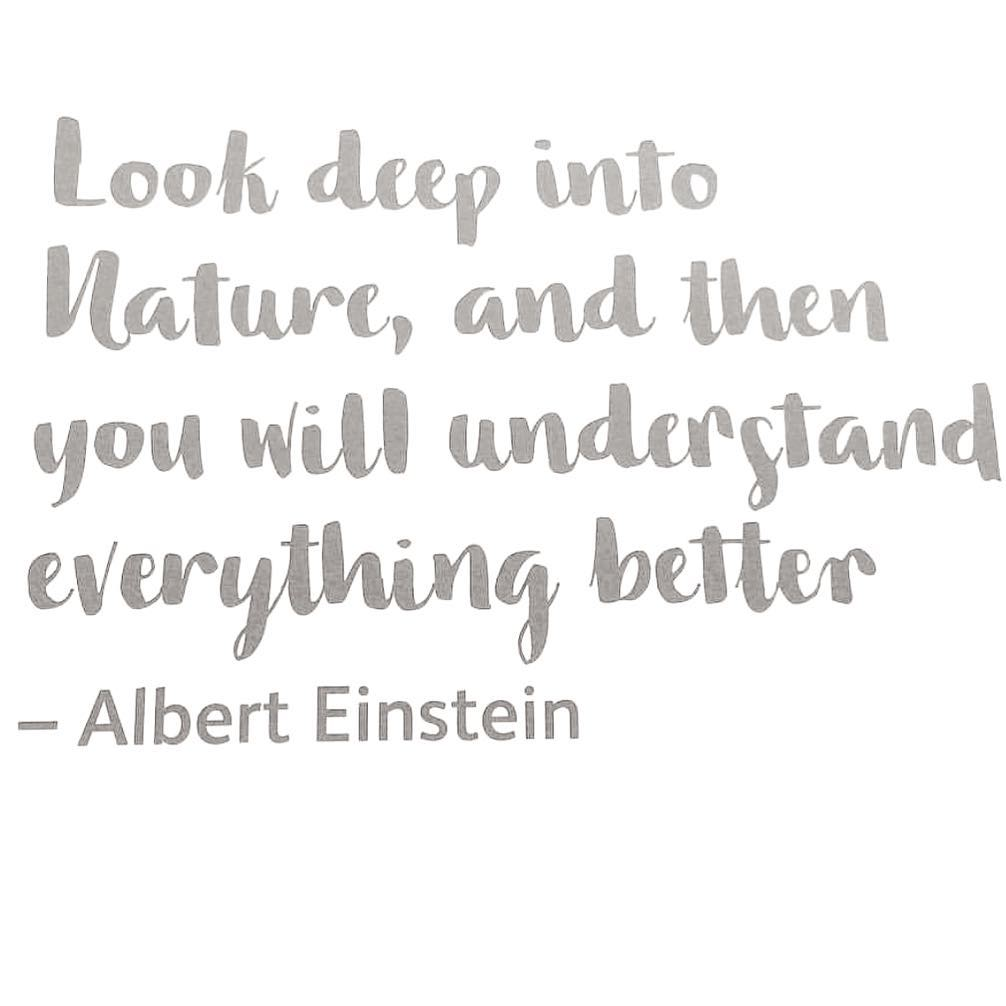 Saturday's thought #nuturenature #naturenourishes