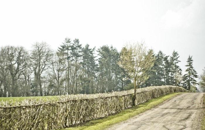 farm road- bamford-min