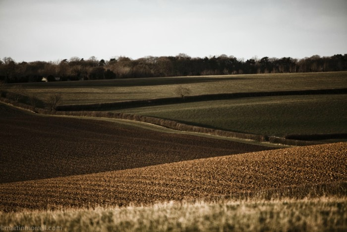 field -bamford-min