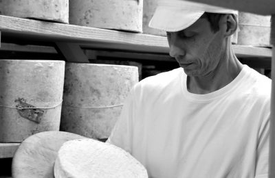 Introducing Daylesford's new Penyston brie